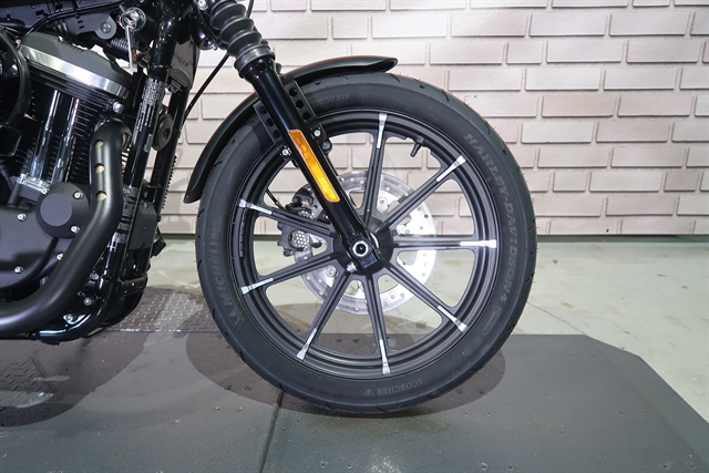 2020 Harley-Davidson XL883N at Wolverine Harley-Davidson