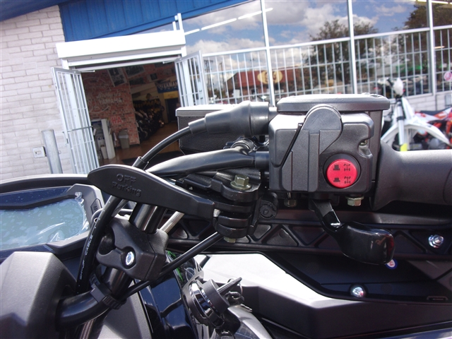 2019 CFMOTO CFORCE 800 XC at Bobby J's Yamaha, Albuquerque, NM 87110