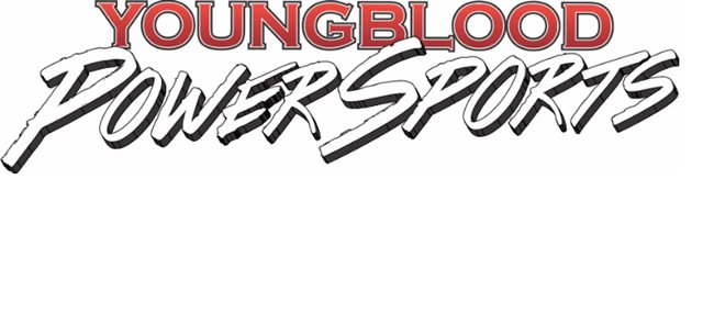2005 Harley-Davidson Road King Base at Youngblood RV & Powersports Springfield Missouri - Ozark MO