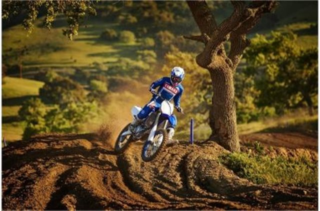 2019 Yamaha YZ 450F at Pete's Cycle Co., Severna Park, MD 21146