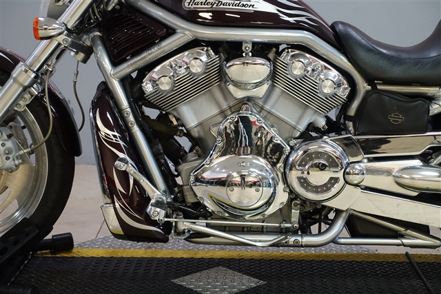 2005 Harley-Davidson VRSC A V-Rod at Southwest Cycle, Cape Coral, FL 33909