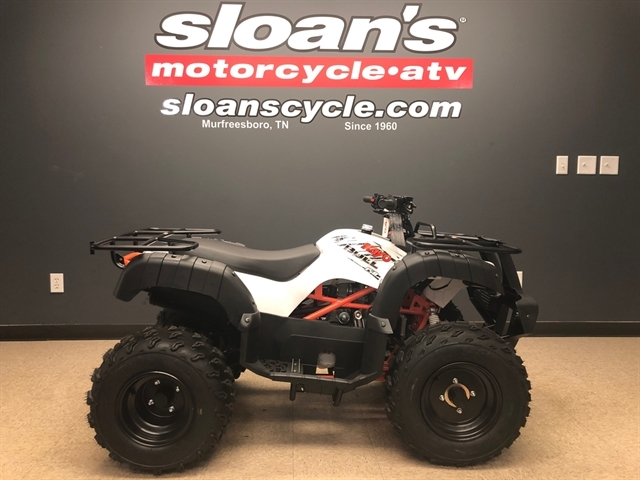 2020 KAYO USA, A & G Distributing BULL 150 AU150-WHT at Sloans Motorcycle ATV, Murfreesboro, TN, 37129