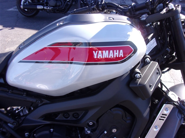 2019 Yamaha XSR 900 at Bobby J's Yamaha, Albuquerque, NM 87110