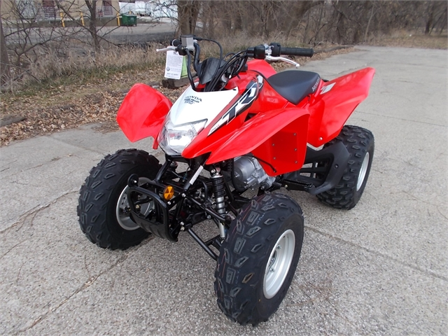 2020 Honda TRX 250X at Nishna Valley Cycle, Atlantic, IA 50022