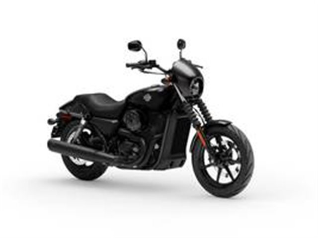 2019 Harley-Davidson XG500 - Street 500 at #1 Cycle Center Harley-Davidson