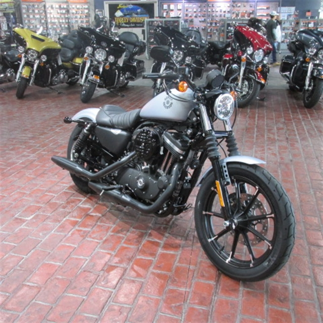 2020 HD XL883N at Bumpus H-D of Memphis