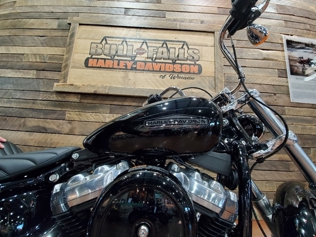 2020 Harley-Davidson Softail Standard at Bull Falls Harley-Davidson