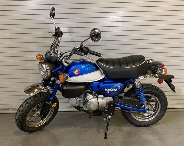 2021 Honda Monkey Base at Kent Motorsports, New Braunfels, TX 78130