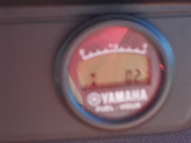2020 Yamaha The Drive Fleet The Drive Gas PTV at Nishna Valley Cycle, Atlantic, IA 50022
