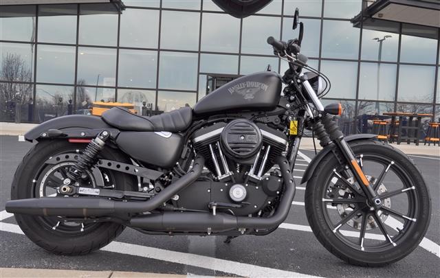 2016 Harley-Davidson Sportster Iron 883 at All American Harley-Davidson, Hughesville, MD 20637