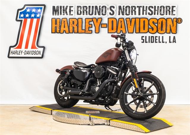 2017 Harley-Davidson Sportster Iron 883 at Mike Bruno's Northshore Harley-Davidson