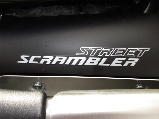 2019 Triumph Street Scrambler Standard at Stu's Motorcycles, Fort Myers, FL 33912