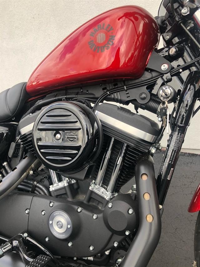 2019 Harley-Davidson Sportster Iron 883 at Thunder Harley-Davidson