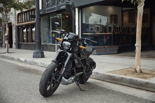 2020 Harley-Davidson Electric LiveWire at Williams Harley-Davidson