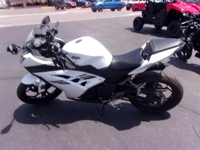 2017 Kawasaki Ninja 300 Base at Bobby J's Yamaha, Albuquerque, NM 87110