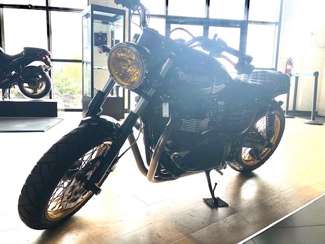 2013 Triumph Bonneville Base at Martin Moto