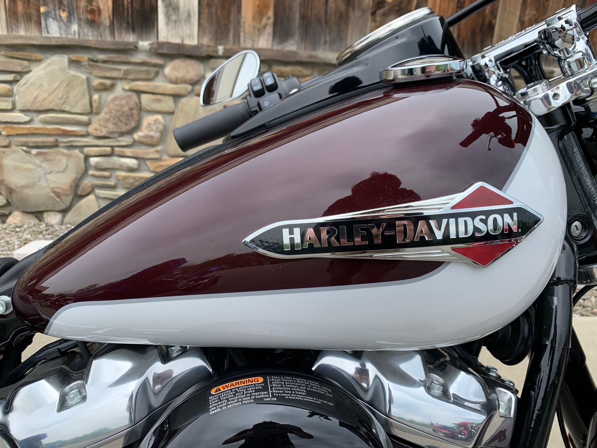 2021 Harley-Davidson FLSL - Softail Slim FLSL Softail Slim at Arkport Cycles