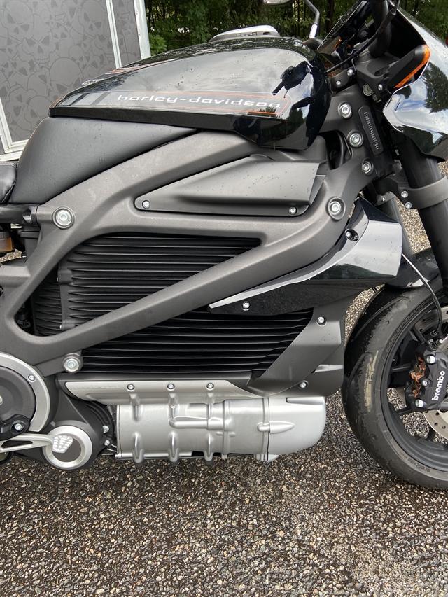 2020 Harley-Davidson Electric LiveWire at Hampton Roads Harley-Davidson