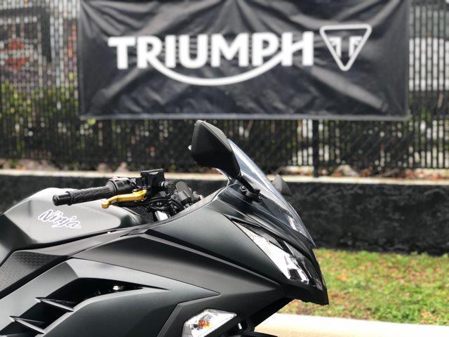 2016 Kawasaki Ninja® 300 at Tampa Triumph, Tampa, FL 33614