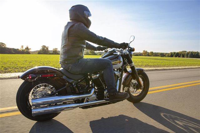 2021 Harley-Davidson Cruiser FLSL Softail Slim at Williams Harley-Davidson