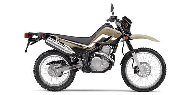 2020 Yamaha XT 250 at Extreme Powersports Inc