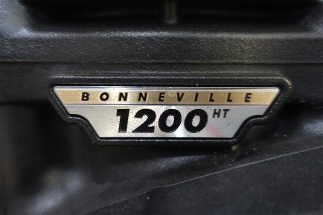 2017 Triumph Bonneville Bobber NADINE Base at Southwest Cycle, Cape Coral, FL 33909