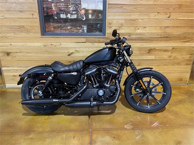 2021 Harley-Davidson Cruiser XL 883N Iron 883 at Thunder Road Harley-Davidson