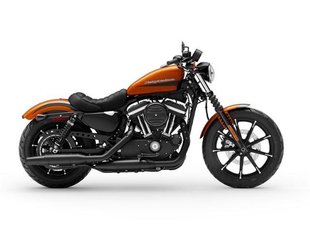 2020 Harley-Davidson XL883N - Sportster  Iron 883 at Roughneck Harley-Davidson