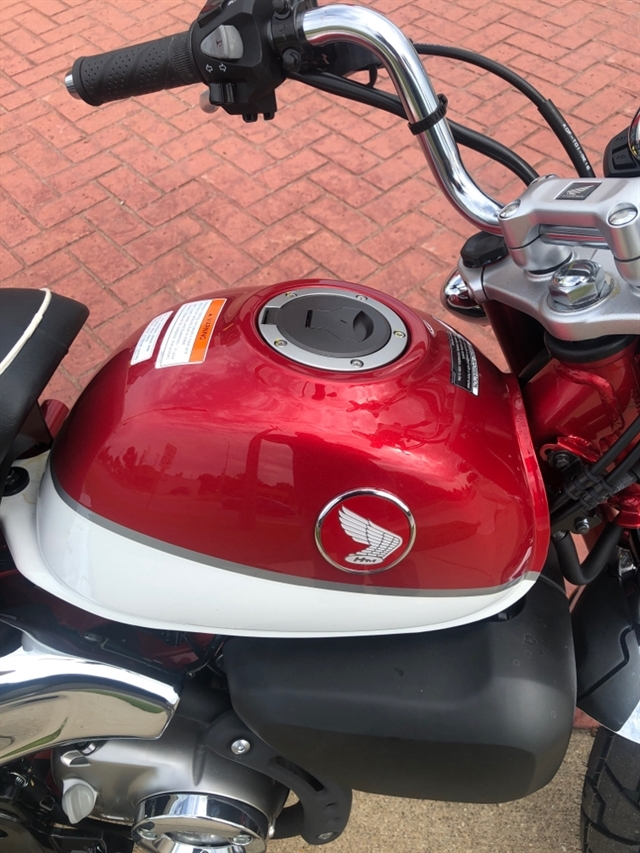 2019 HONDA MONKEY 125 ABS ABS at Genthe Honda Powersports, Southgate, MI 48195